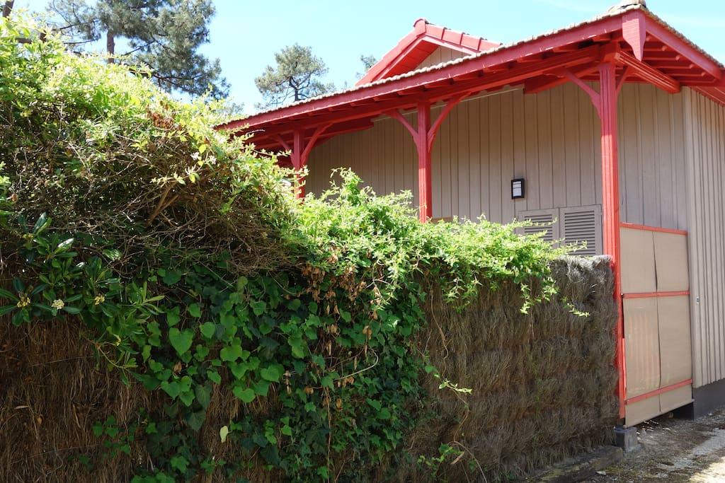 Maison Tout En Bois Cap Ferret Quartier Pecheur Maisons