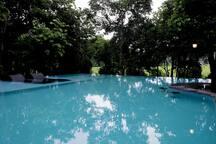 infinity pool- ext