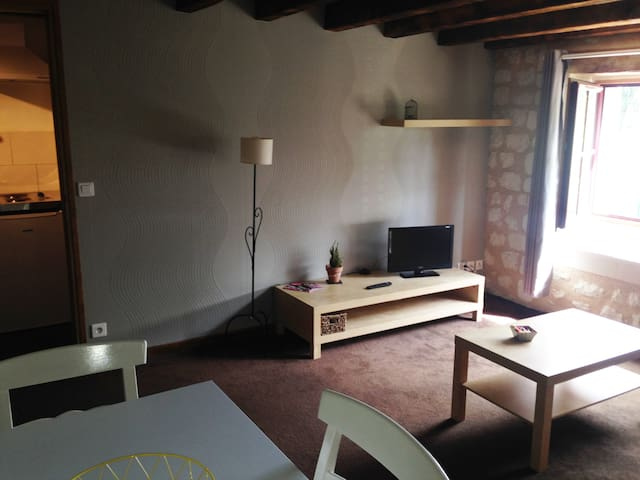APPARTEMENT MEUBLE - Bourgueil - Wohnung