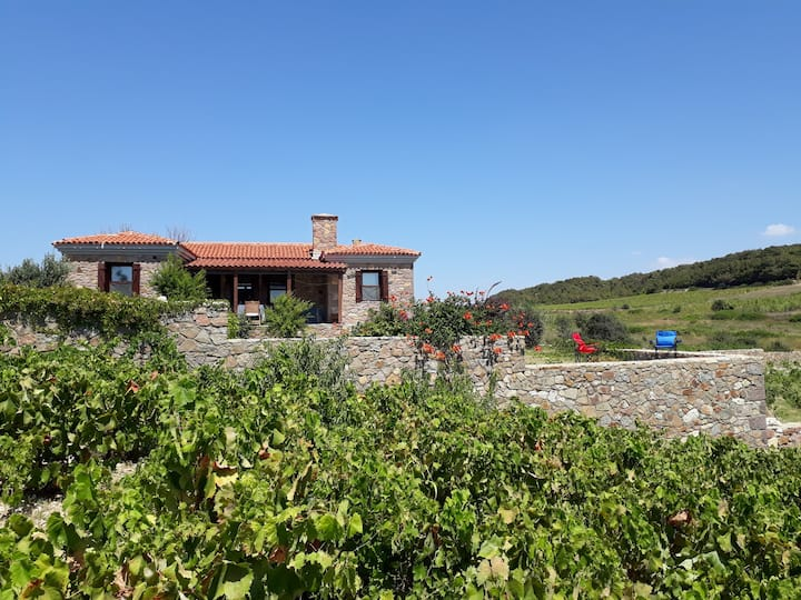 Bozcaada Habbele Koyu'nda Şipera Bağ Evi