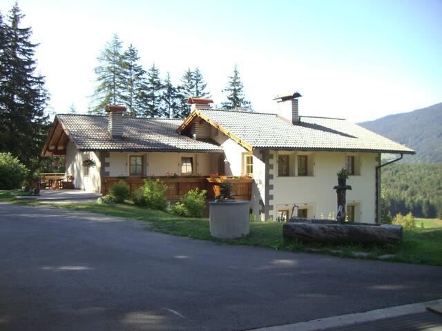 Chalet Alpina - Castelrotto - Flat