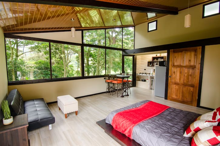 Bird Paradise Toucan Suite