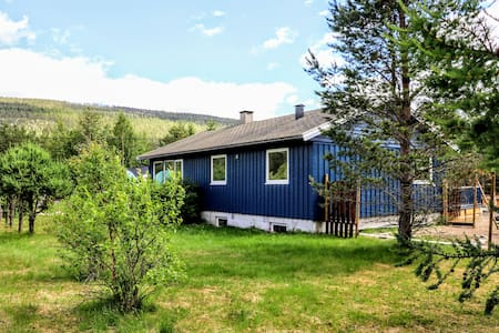 Nordic blue house
