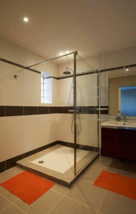 La salle d'eau à une grande douche