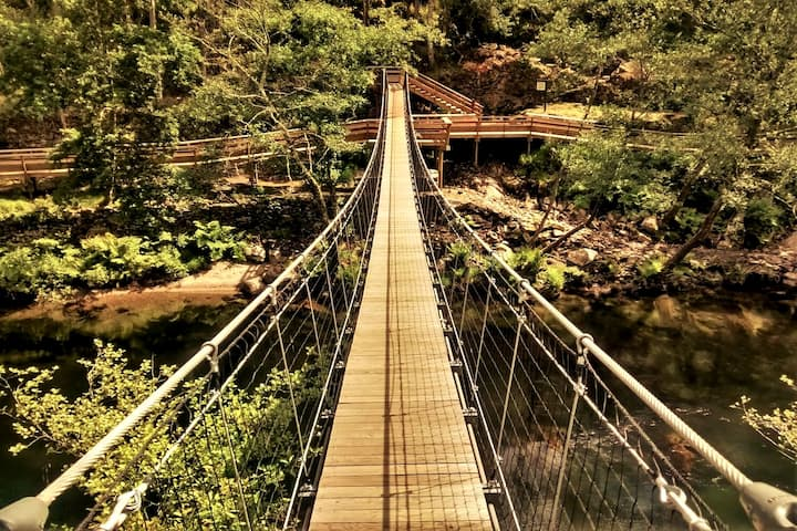 The suspension bridge at Paiva Walkways