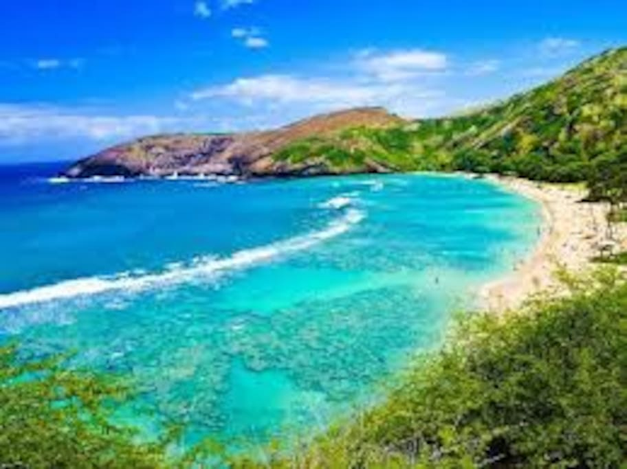 Makaha, 1mile walk/drive to the Entire CONDO just 4U!