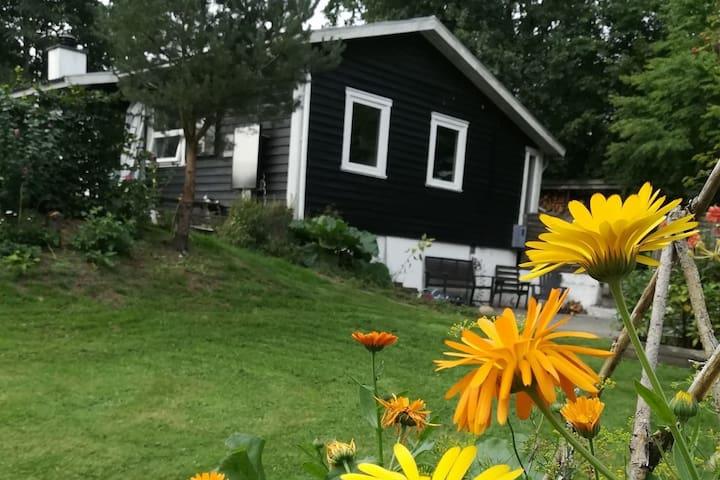 Sommerhus på stor naturgrund i flotte omgivelser