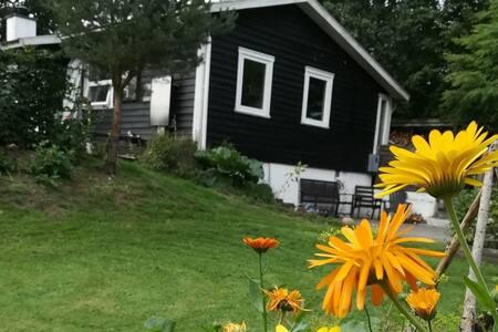 Sommerhus på stor naturgrund