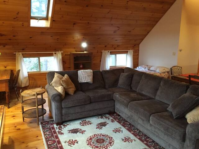 Retreat house living area, with uber-comfortable queen-sized convertible bed.