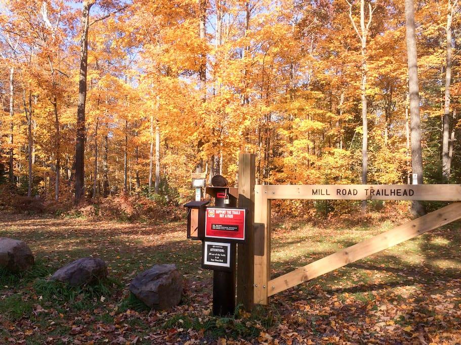 Just a short walk away from the Mill Rd Trailhead (Michigan Tech Trails)