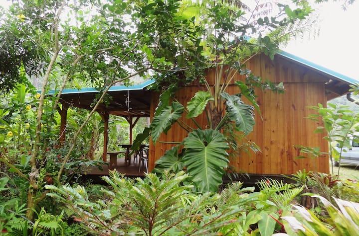Joli chalet de bois au coeur de la tribu de Koinde