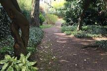Autre partie du jardin