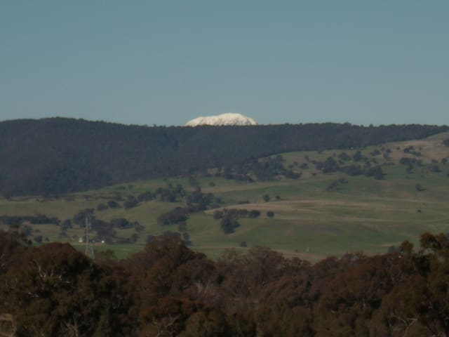 Mt Buller from our farm