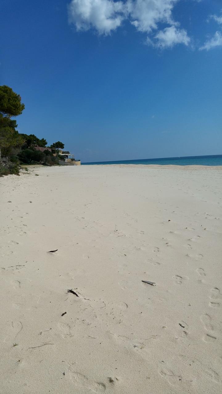 Mare a Santa Margherita