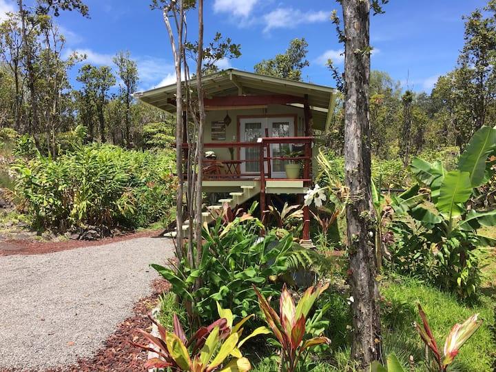 Rainforest Eco Cabin  *Disinfected & private*