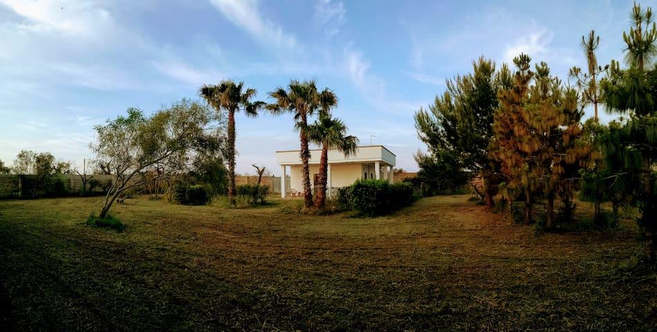 Lovely villa in Salento's nature