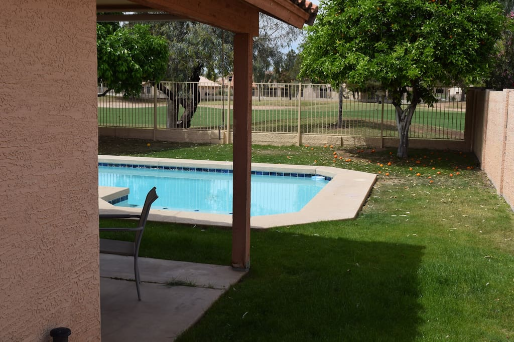 backyard with pool n golf course