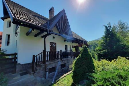 Holiday Home in Valea Dobârlăului, Transylvania