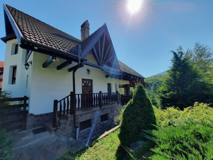 Valdo House, Holiday Home in Valea Dobârlăului