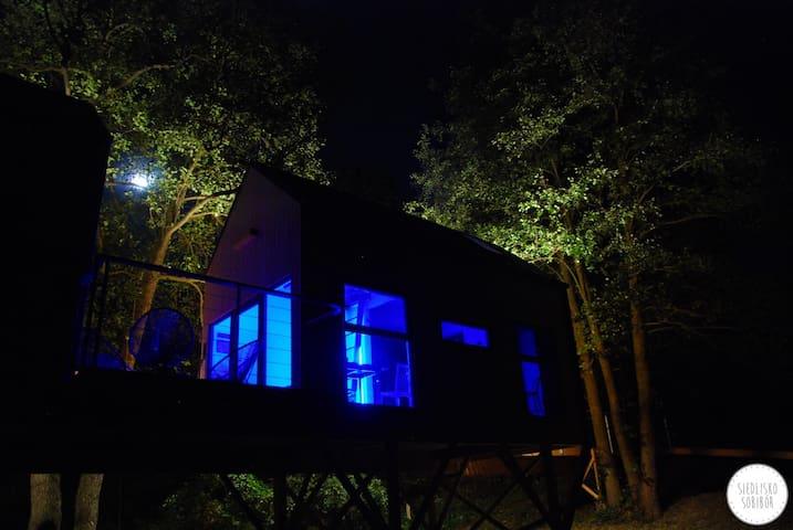Dzięcioł - domek w gałęziach drzew - Wlodawa - Trädhus