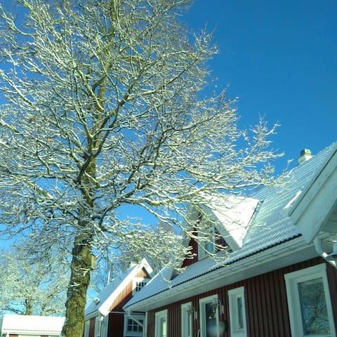 Big house, wonderful nature Torekov - Båstad V - Rumah