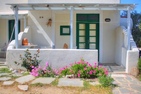Nikiforos apartment - Naxos Cyclades
