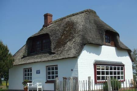 Reetkate auf der Nordsee-Halbinsel Nordstrand - Nordstrand - Haus