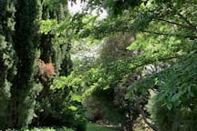 'Tara' gardens