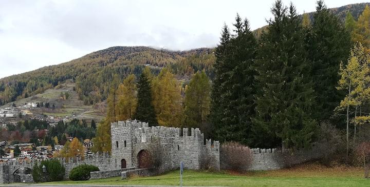 Un nido nella torre del castello