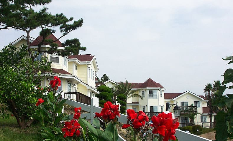 Napoli Resort Jeju (Standard Double)