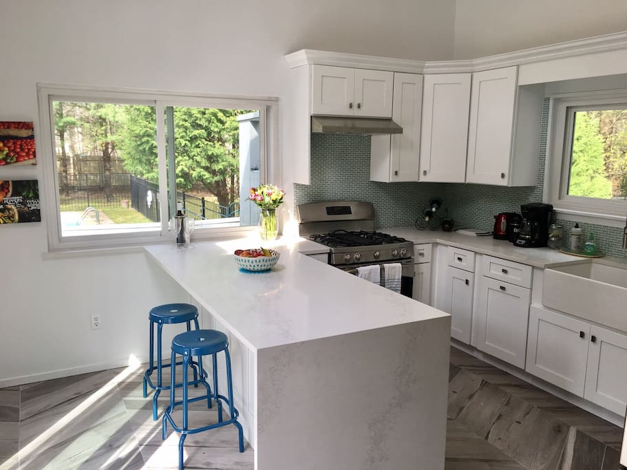 Newly renovated kitchen with stainless steel appliances and a view of the pool and backyard