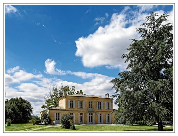 Luxury Villa in a Vineyard 15mins from Bordeaux