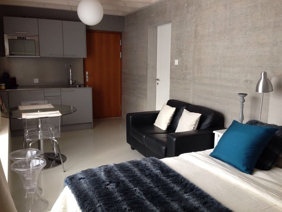 Tr s joli studio meubl neuf apartments for rent in for Location studio meuble a nice