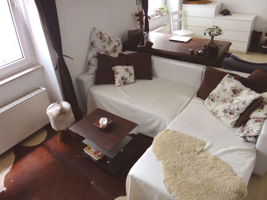 Große ausziehbare Couch für weitere Schlafmöglichkeiten.