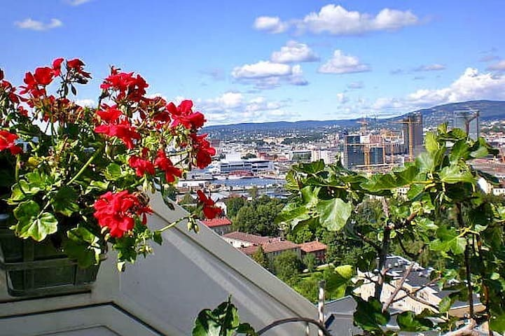 Private Roof Terrace with spectacular Oslo view - Oslo - Lägenhet