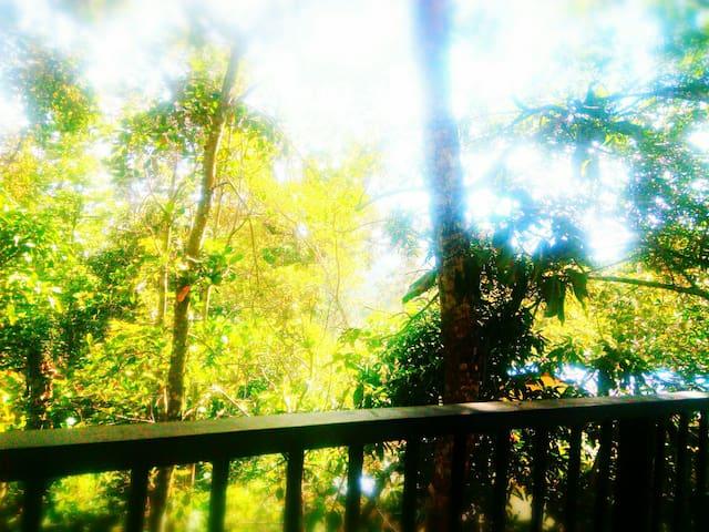 Summer villa guest inn Ella sri Lanka