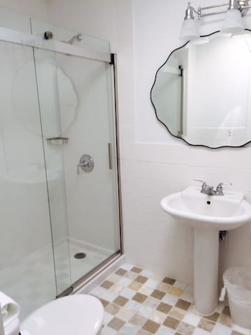Bathroom with large walk-in shower
