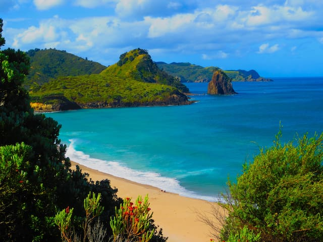 Awana Beach Paradise, Great Barrier Island, N.Z.