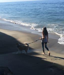 Laguna Beach - Laguna Beach - Dům