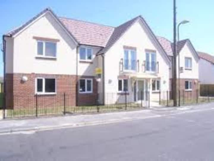 Modern garden flat