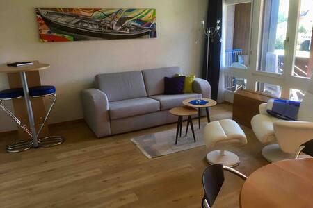 Schöne 2 Zi-Wohnung mit Bergsicht