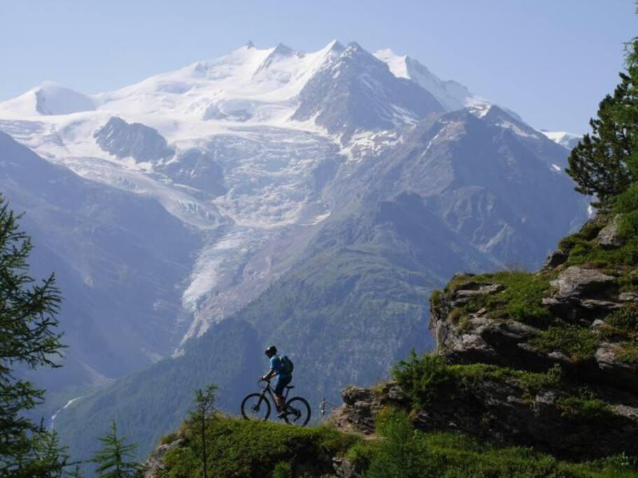 Tolle Bike Touren in der Umgebung: Visperterminen, Moosalp etc. bicken wandern erholen