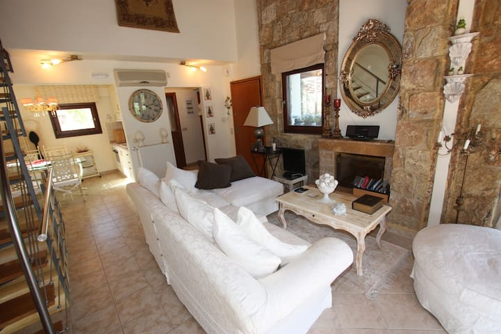 Luxury Sani Villa - Sane - House