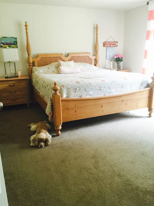 Bedroom Suite... (Yes, furry friends are welcome:)