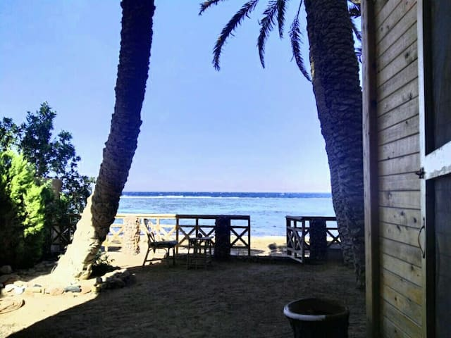 The beach house - Dahab - Hus