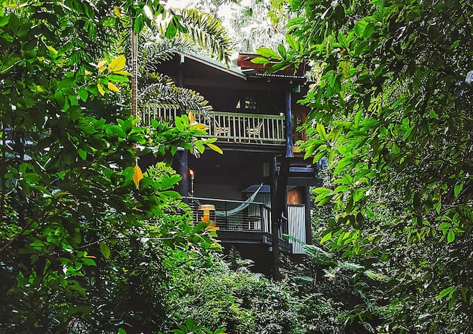 Butterfly Bend Retreat - Daintree
