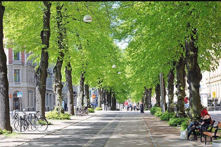Dubbelrum i central lägenhet - Göteborg