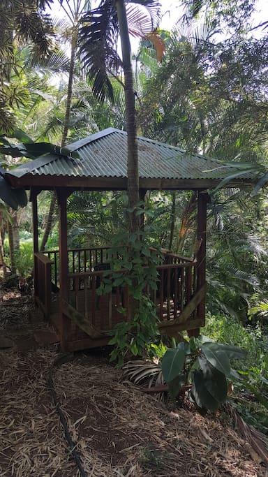 Gazebo in the Rain Forest
