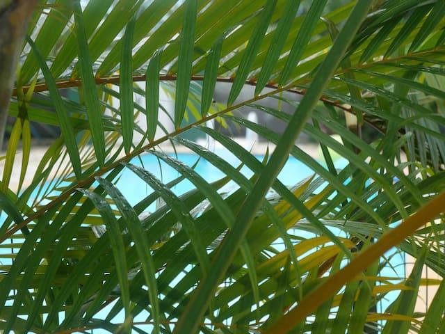 Villa Kaya Entre Calme et Nature en Guadeloupe