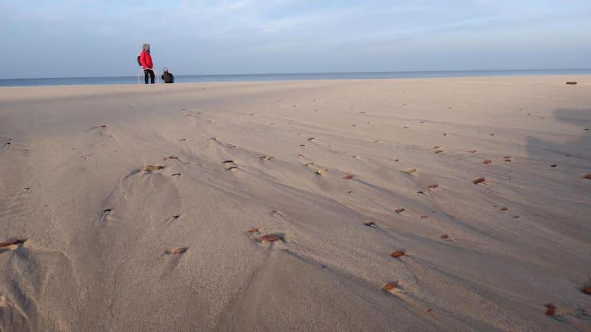 Plaża w Słowińskim Parku Narodowym